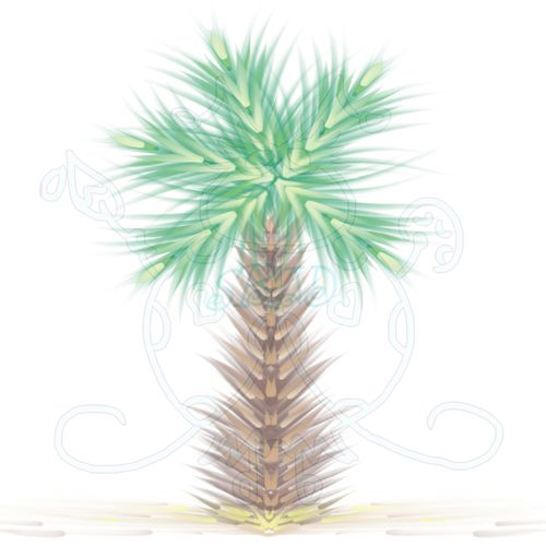 Palm Tree Single Sample JPEG 6x6 300dpi